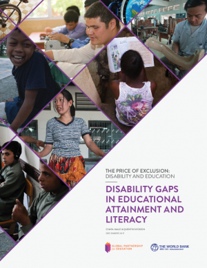 Disability gaps in educational attainment and literacy