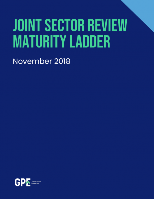 Joint sector review maturity ladder