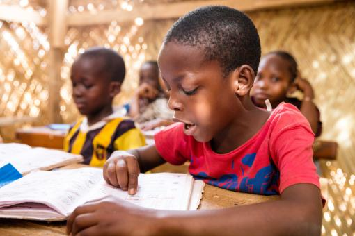 Image: Student reads a textbook. Couronne Nord 1 Primary School, Niamey, Niger. Credit: GPE/Kelley Lynch